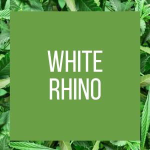 tt-strainpage-indica-whiterhino-1-26-2017