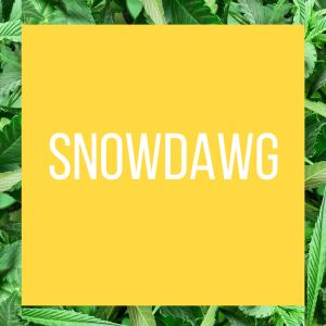 tt-strainpage-snowdawg-1-27-2017