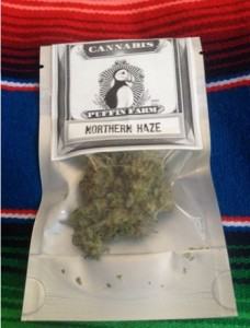northernhaze