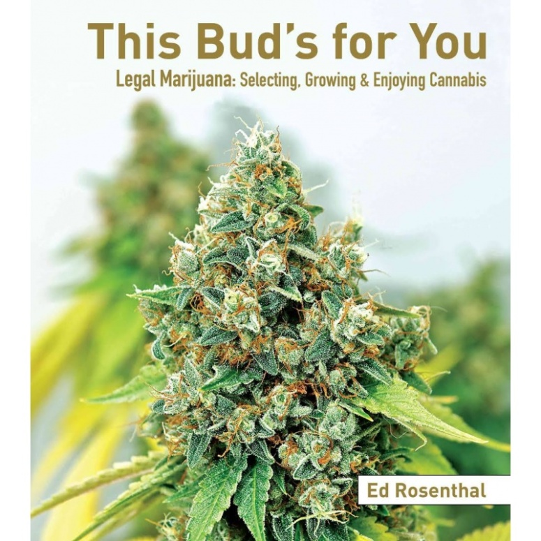 this buds for you
