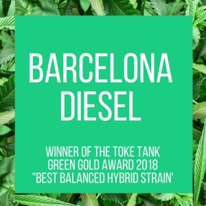 TT.420Awards.BarcelonaDiesel.4.17.2018